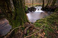 Cascade on Latchmore Brook