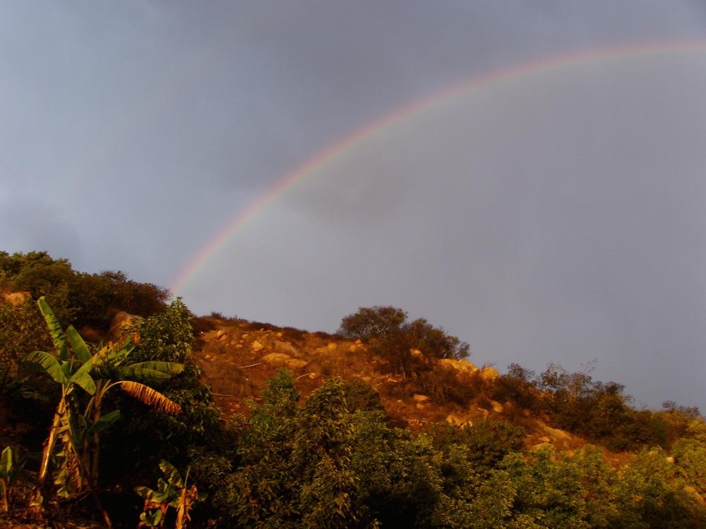 8dec2007_rainbow.jpg