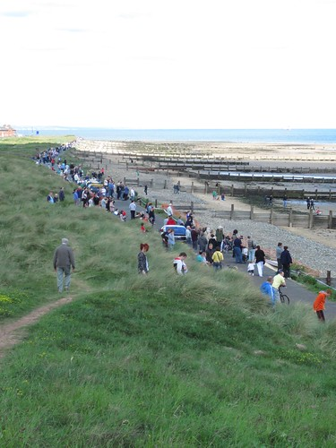 Redcar Whale Watchers