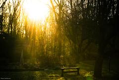 SunDawn-3799.jpg