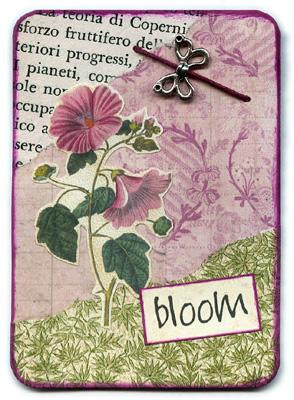 Bloom 2/3