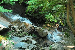 Waterfall at the Park