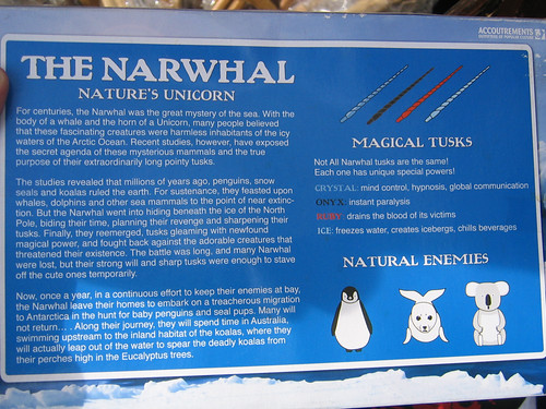 Day 05 - Narwhal Box Back