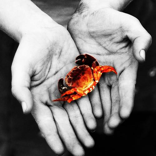 Crabbed
