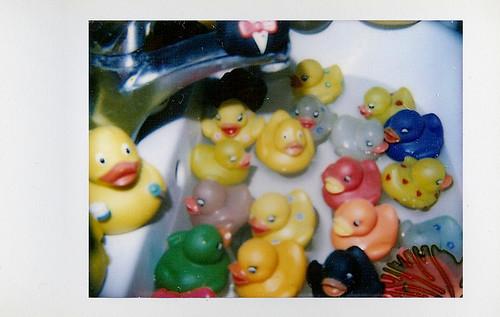 Bath Full of Dickies