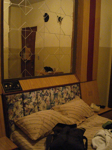 The sexy panel and sexy headboard and sexy mirror.