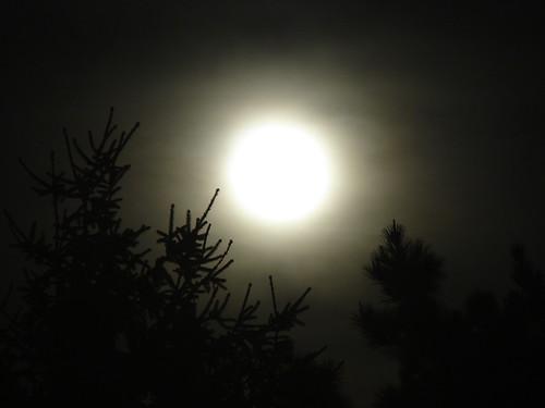 La luna de nochebuena