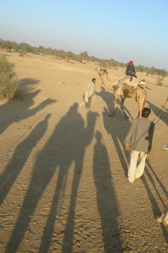 騎駱駝1-13自己的影�