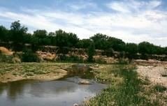 img013 San Pedro River