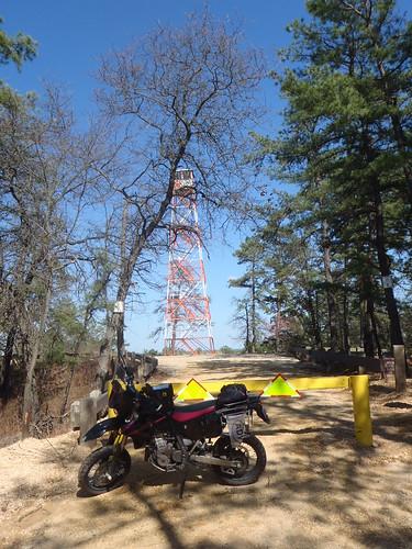 Apple Pie Hill fire tower, Tabernacle, NJ