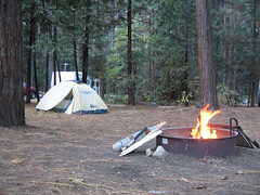 Yosemite campground
