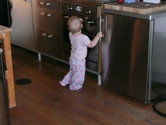 exploring appliances