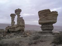 Les parc nationaux du colorado n'ont qu'a bien se tenir. Si on s'approche, on trouve des feuilles fossilisées de plus de quelques millions d'années.