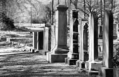 Ora ARP graves