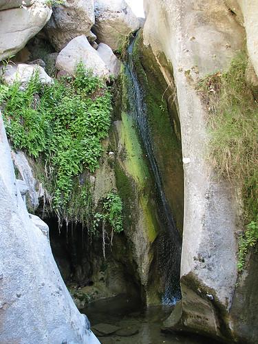 Santa Ynez Trail 06