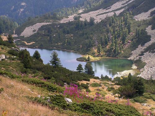 Рибното Василашко езеро