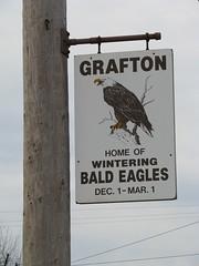 Grafton Eagles Sign