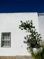 Simonstown, Cape Town
