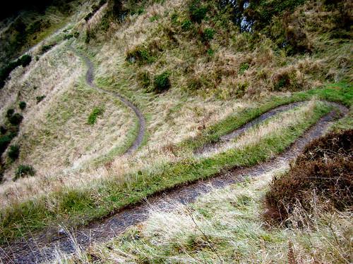 A Wayward Path
