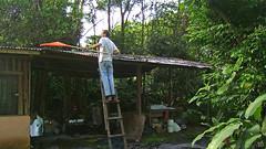 JC in Arbeitskleidung und -wut. Laub vom Dach holen