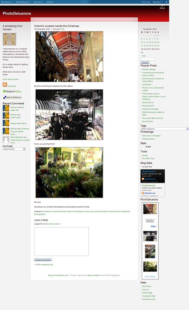 Picnik snapshot tool