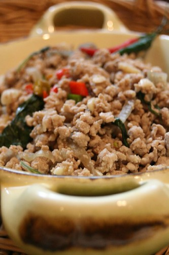 Have thought asian ground pork recipes apologise, but