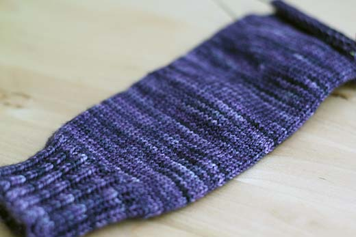 Logwood Socks In Progress