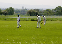 Cricket In Phoenix Park - Dublin