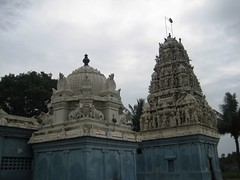 Vimanams of Nootretteswarar (big) and Chathurvedeeswarar (small)