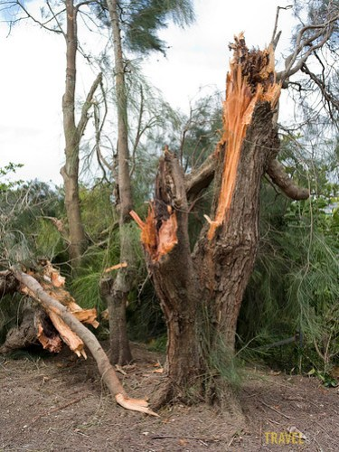 Typhoon Songda hits Okinawa