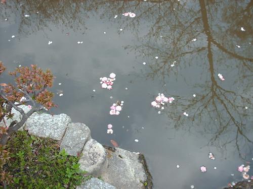 japan 2008 070