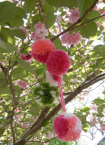Pom Poms don't grow on trees