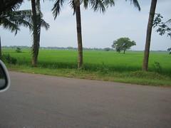 Karanodai-Periyapalayam-Uthukottai Road