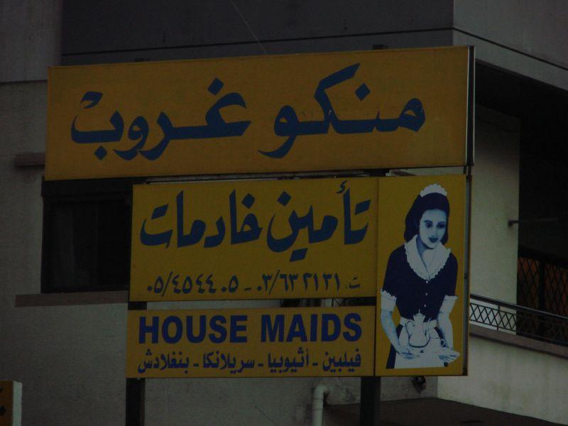 negozi specializzati per domestiche