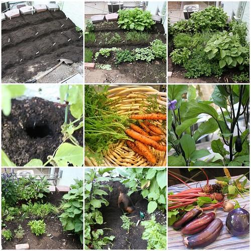 Vegetable Garden 2007
