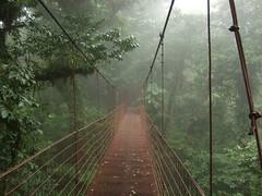 Monteverde, Costa Rica, 2007.