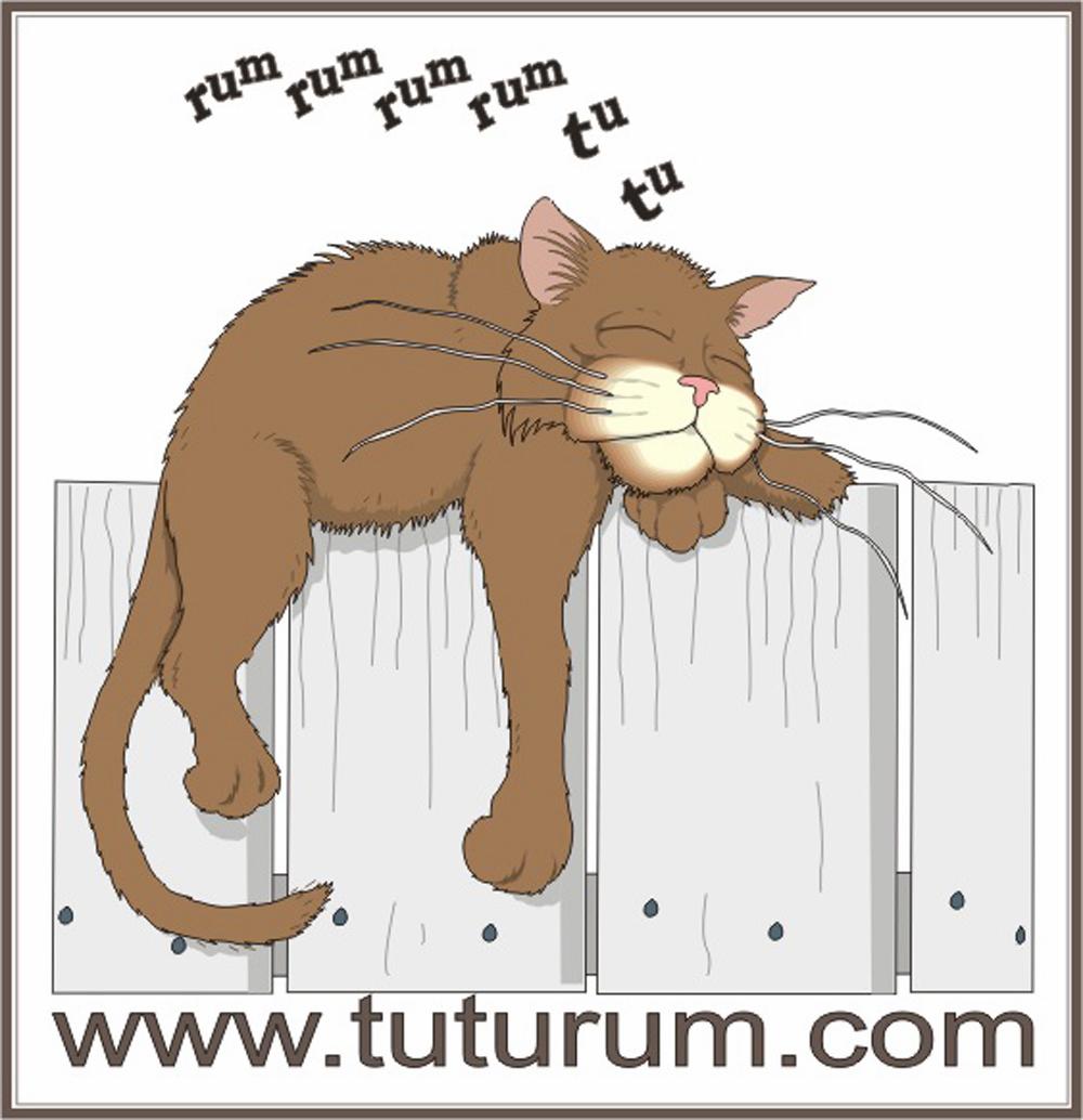 log Tuturum
