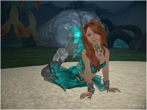 octopus garden 001