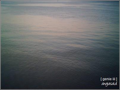 20080325_029.jpg