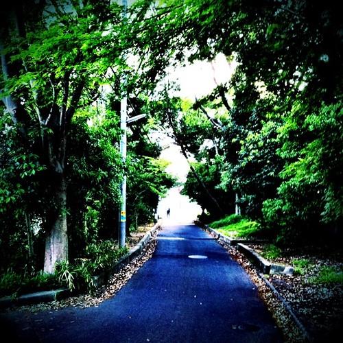 トンネルを抜けると…。 今日の帰り道、近くの駅まで歩いてます。 #walking