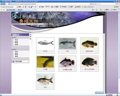 20080307_ODAP-IE7