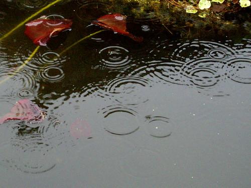 raining now