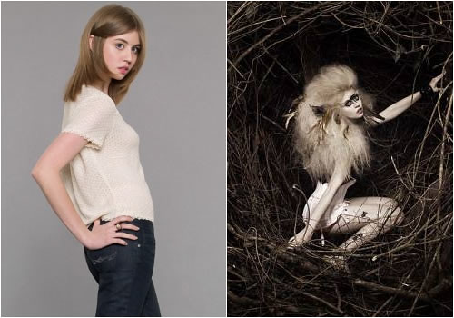 antm-cycle-17-allison-harvard