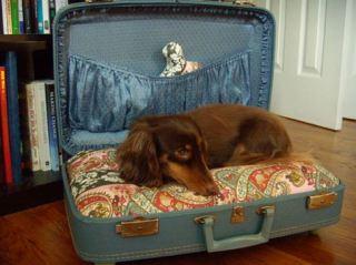 DIY-camita de perro en maleta