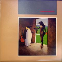 Penguin Cafe Orchestra 6501