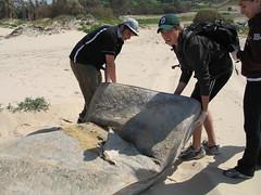 Ashdod Beach Clean Up011