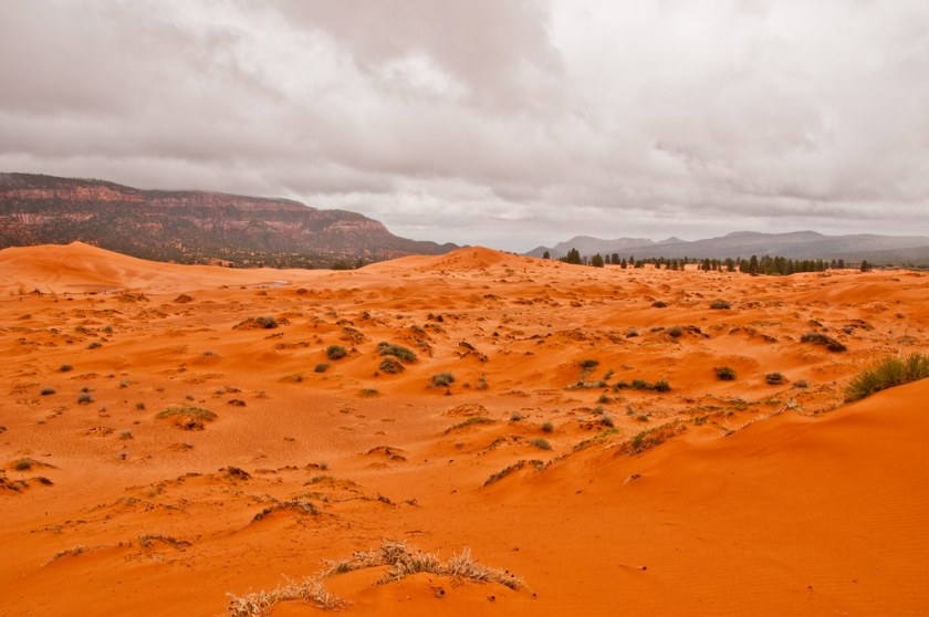 The wind gap through which the sand for the sand dunes comes