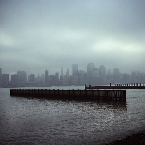 misty shore