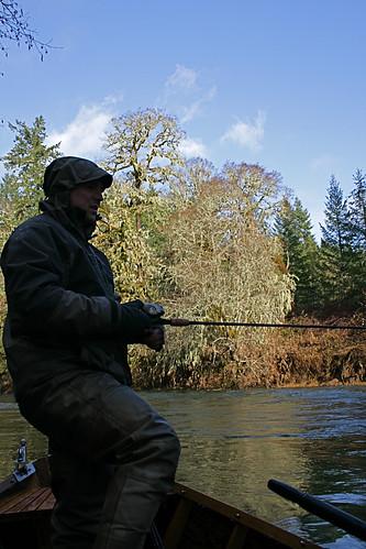 Oregon winter steelhead