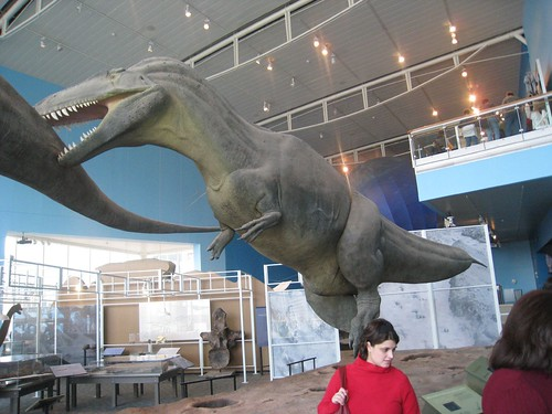 Dino Display